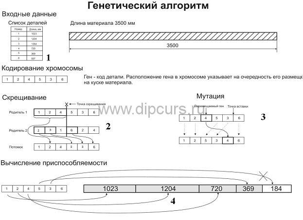 delphi dipcurs Схема работы генетического алгоритма программы дипломной